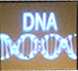 dna_screen